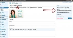 How to Create a Blog Button | DaniSchnakenberg.com