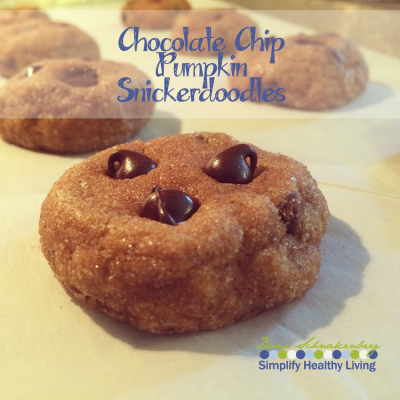 Chocolate Chip Pumpkin Snickerdoodles