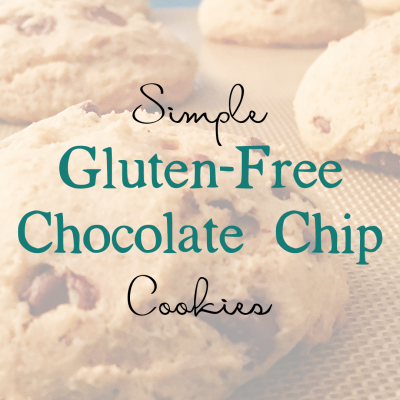 Simple Gluten-Free Chocolate Chip Cookies | TheSchnakenbergs.com