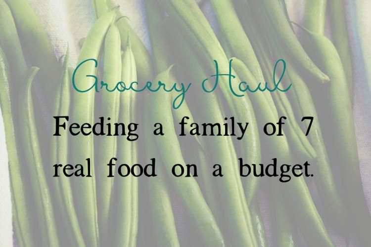 Grocery Haul | BigFamilyMinimalist.com