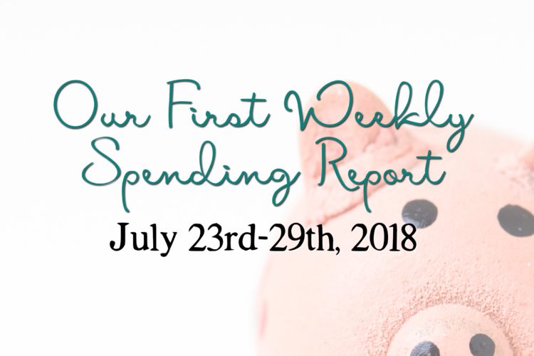 Our First Weekly Spending Report | BigFamilyMinimalist.com